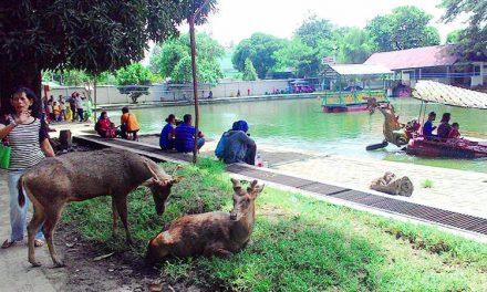 Taman Balekambang Solo: Alternatif Wisata Keluarga dan Olahraga masa Pandemi